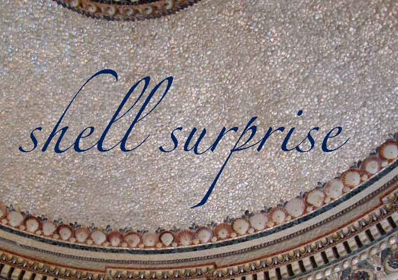 Shell surprise 96
