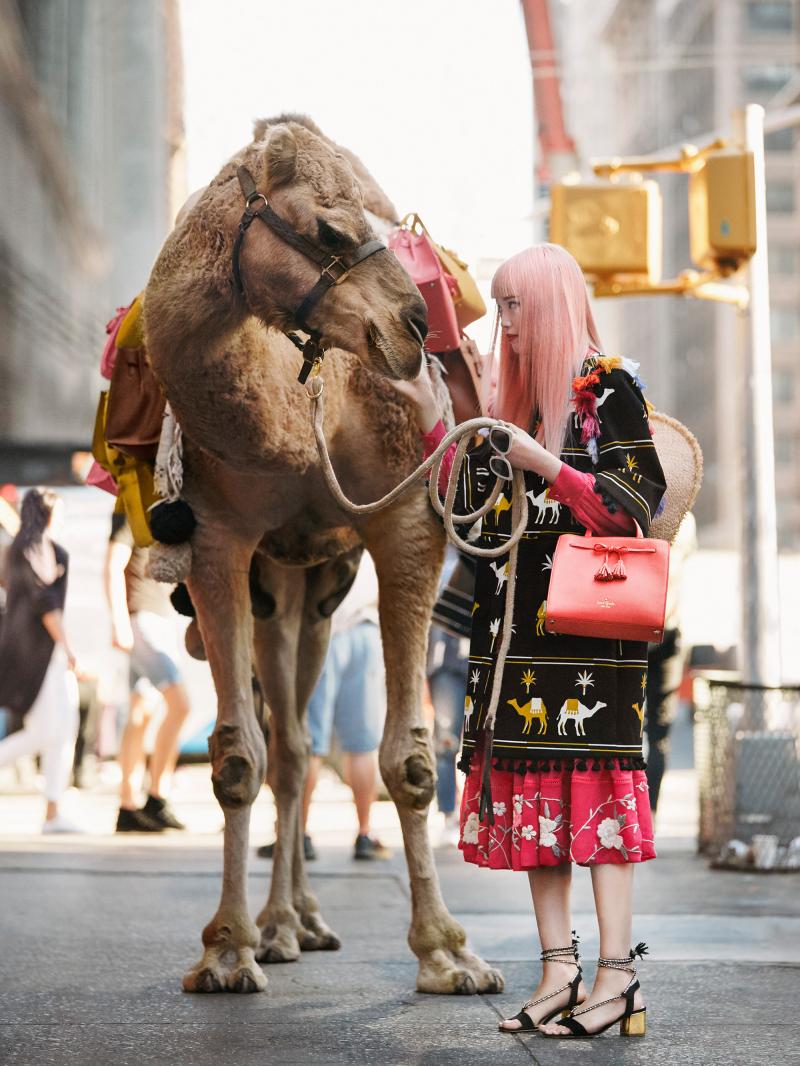 Kate spade camel