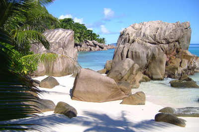 Anse_patates_4_email_2