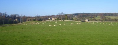 Stocksfield_hall_from_train