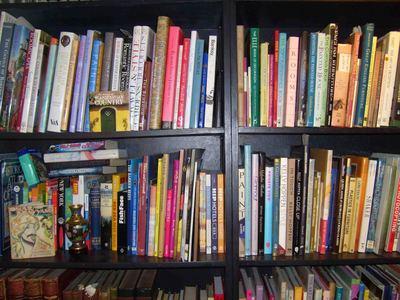 Helen_chips_bookshelf_em34