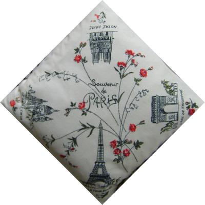 Souvenir_of_paris_cushion_23
