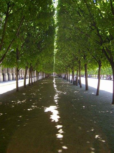 Paris_palais_royale_gardensem44